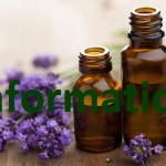 essential_oils for front page